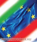 Fordítás magyarról lengyelre (bruttó)