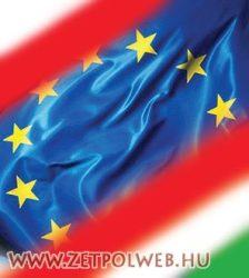 Tłumaczenie z polskiego na węgierski (netto)